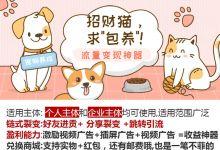 轻松养猫咪赚钱休闲宠物游戏微信小程序源码
